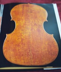 Violincello