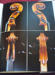 Violincello detail