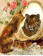 Cat Tiger Reflection